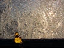 在窗口旁边的蝴蝶在冬天冰冷的样式之前 库存图片