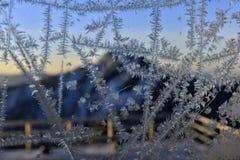 在窗口的冰crystall 免版税库存图片