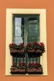 在窗口的花在意大利 库存照片