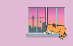 在窗口的逗人喜爱的猫睡眠 免版税库存图片