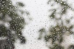 在窗口的雨下落有背景 库存照片