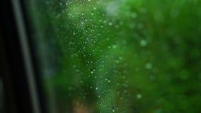 在窗口的雨珠在汽车 集中于跑在窗口下的雨下落 股票录像
