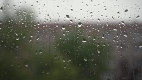 在窗口的雨珠 股票录像