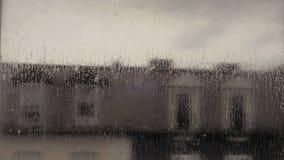 在窗口的雨纹理 股票录像