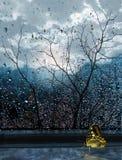 在窗口的蝴蝶在秋天之前在雨中 免版税库存照片