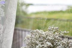 在窗口背景的小白花 软的家庭装饰 在花瓶的白色麦花 减速火箭的样式 下雨下落 免版税库存照片
