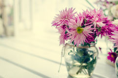 在窗口附近的桃红色和紫色花 库存照片