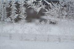在窗口10的水晶雪花 免版税库存图片