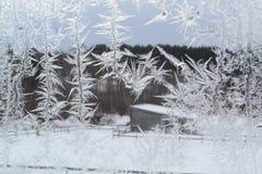 在窗口9的水晶雪花 图库摄影