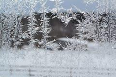 在窗口6的水晶雪花 免版税库存照片