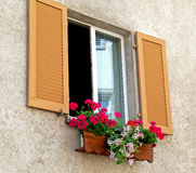 在窗槛花箱的大竺葵 库存照片