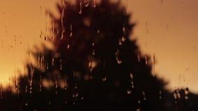 在窗玻璃摘要的雨珠弄脏了背景 股票视频