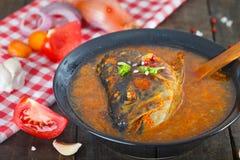 在立即可食的碗的热,辣鱼汤 图库摄影