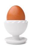 在立场的鸡蛋 库存照片