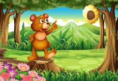 在站立在树桩上的森林的一头熊在蜂箱附近 免版税库存照片