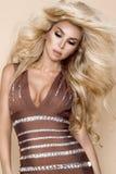 在站立在米黄背景的一件套衫连超短裙的典雅的女性模型 免版税图库摄影