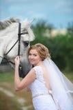 在站立在草坪的一匹美丽的良种马旁边的新娘 免版税库存照片