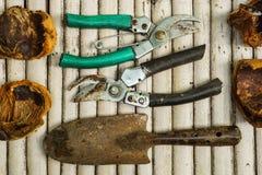 在竹地板上的花匠的工具 库存照片