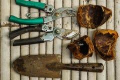 在竹地板上的花匠的工具 免版税库存照片