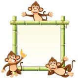 在竹委员会的猴子 库存例证