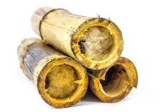 在竹子的甜黏米饭 免版税库存图片