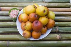 在竹子的猴子苹果 免版税图库摄影