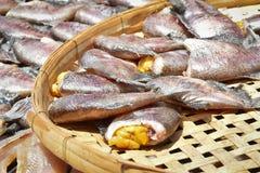 在竹栅格的干鱼 免版税库存图片