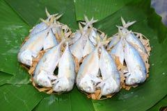 在竹滤网和香蕉叶子的淡水鳔形鱼鲭鱼。 图库摄影
