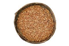 在竹篮子包含的咖啡豆,阿拉伯咖啡咖啡豆,在洗涤或湿式法和各式各样处理后 免版税库存图片
