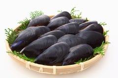 在竹篮子的淡菜 库存图片