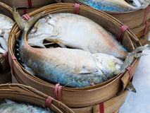 在竹篮子蒸的泰国鲭鱼 免版税库存照片