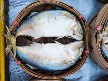 在竹篮子蒸的泰国鲭鱼 库存照片