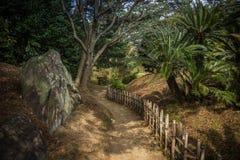 在竹篱芭之间的Ritsurin晃演栗子树丛庭院里铺石渣小径 免版税图库摄影