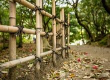在竹篱芭之间的Ritsurin晃演栗子树丛庭院里铺石渣小径 库存图片