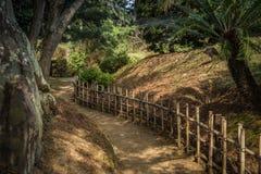 在竹篱芭之间的Ritsurin晃演栗子树丛庭院里铺石渣小径 免版税库存图片