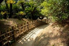 在竹篱芭之间的Ritsurin晃演栗子树丛庭院里铺石渣小径 图库摄影