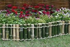 在竹篱芭的花 免版税图库摄影