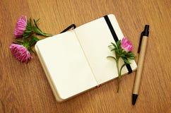 在笔记本的翠菊芽 库存图片