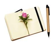 在笔记本的翠菊芽 免版税库存照片