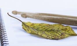 在笔记的鼓槌覆盖,干燥秋天叶子 免版税图库摄影