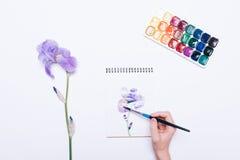 画在笔记薄机智的一只女性手的顶视图一朵蓝色花 库存照片