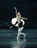 在第一视域芭蕾天鹅湖的爱 免版税库存照片