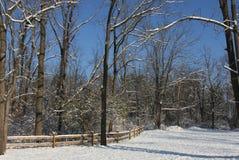 在第一雪以后的早晨 图库摄影