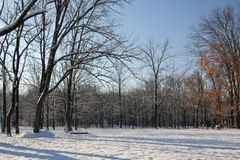 在第一雪以后的早晨 库存照片