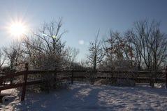 在第一雪以后的早晨 免版税库存图片