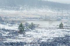 在第一雪的一个美好的挪威风景在秋天 免版税库存照片