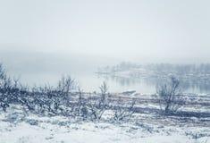在第一雪的一个美好的挪威风景在秋天 免版税库存图片