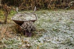 在第一雪的老推车 免版税库存照片