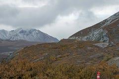 在第一雪的阿拉斯加的山风景 免版税库存图片