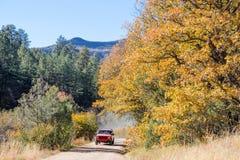 在第4的精采秋天颜色7月峡谷新墨西哥 库存照片
